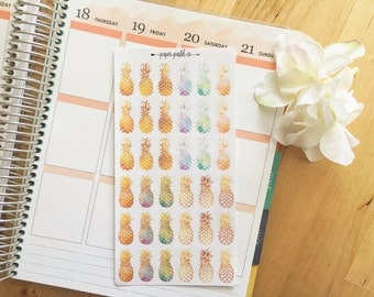 Pineapple Planner Stickers, Pineapple Stickers, Planner Stickers, Erin Condren, Happy Planner