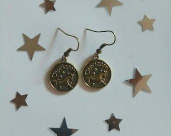 Zodiac Sign Capricorn Earrings
