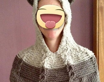 Animal ears hooded crochet cowl