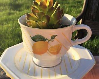 """1980s Mikasa """"Lemons"""" cup and saucer -- perfect for a bright & sunny succulent planter!"""
