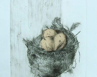 NEST 6/15   -   original fine art print,  inviting egg-filled nest etching, delicate hand rubbed lines