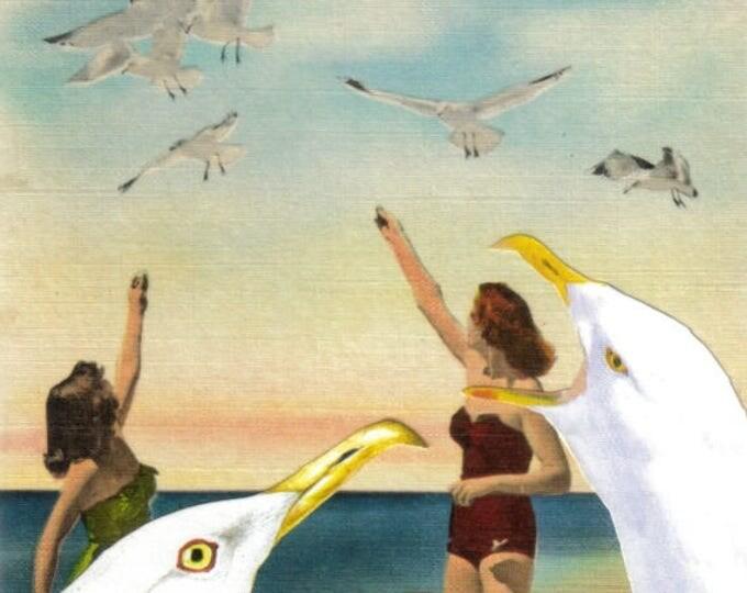 Coastal Seagull Artwork, Nautical Sea Gull Art, Beachy Decor