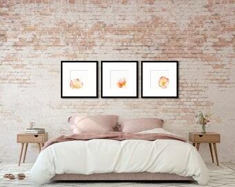 Nature Photography - Botanical Print Set - Three Poppy Photographs - wall art - blush pink, orange, peach, creme - nursery decor - feminine