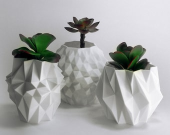 Housewarming Gift Set Faceted Planter Gift Abstract Home Gift