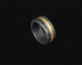 10 -- Iron and brass ring --  i+11869