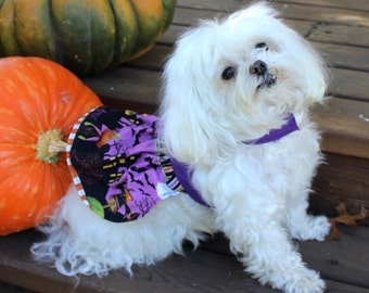 SALE: Halloween Dog Dress, XS and S Holiday theme skirt with Purple Bodice dresses for dogs