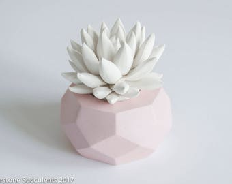Succulent Sculpture Geometric Planter Faux Plant Unique Art Object Desktop Accessories Modern Minimalist Home Office Decor Geometric Art