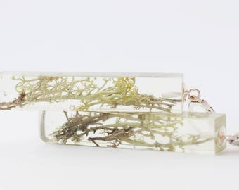 Moss earrings | Botanical earrings | Botanical jewelry | Green moss jewelry | Real moss nature jewelry | Nature resin jewelry | Resin nature