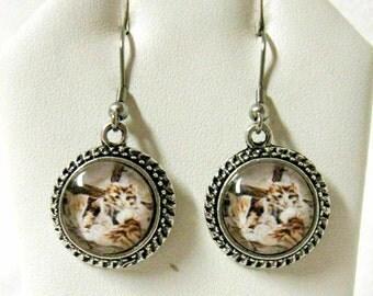 Cats on a window sill earrings - CAP07-015