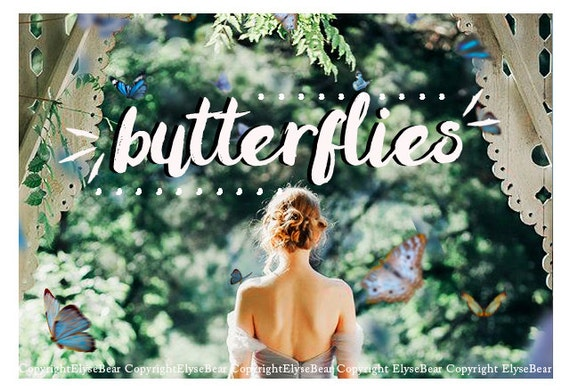 butterfly photoshop overlays png realistic natural by