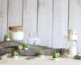 Succulent Candle Tea Lights, Wedding Favors, Shabby Chic Birthday Favor Ideas, Summer Baby Shower, Bridal Shower Decorations, Cactus Candles
