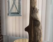 Driftwood floor lamp...