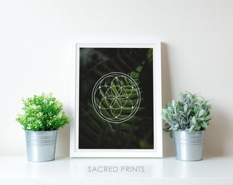 Green Fern Digital Print, Seed Of Life Decor, Fern Nature Poster, Sacred Symbols, Modern Symbols, Fern Poster, Sacred Geometry, Nature Gifts