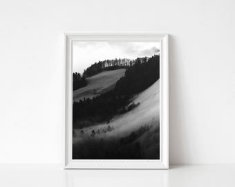 Foggy Forest Black and white Print, Forest Wall Art, Large Poster, Modern Minimal, Forest Landscape, Mountain Decor, Black and white