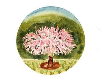 Original Watercolor painting Spring Flowering trees Blooming flowers art illustration