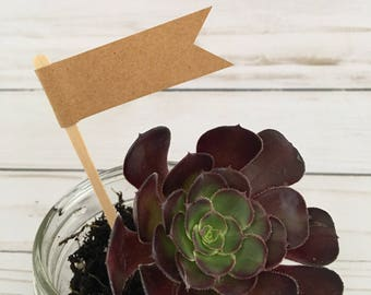 Succulent Plant Flag, Blank Potted Plant Tag, Wedding Favor, Cupcake Tag, Blank Kraft Flags on a bamboo stick