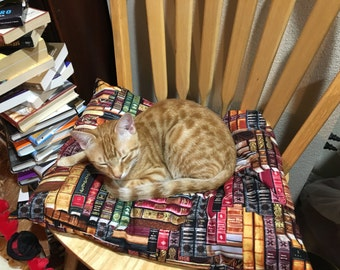 Books Cat Pillow