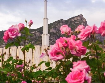 Provo LDS Temple Photograph - Spring Roses - Digital Download - Printable
