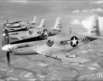 16x24 Poster; F-51H Mustang P-52 Maryland Ang Guardian Angels 1952