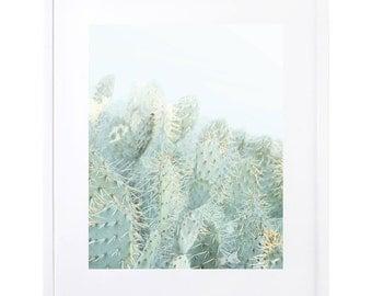 Cactus Photography, Digital Download, Desert Photography, Cacti, Abstract Desert Art, Printable Art, Cactus Art