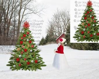 DIGITAL Christmas Tree Overlay PNG for photographers, photography, Christmas: Christmas Tree Overlay PNG