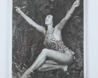 Trading Cards, Bettie Page Collectors Cards, Bettie in Jungle Land, 5 Card Set, 1950s Pin Up Photos by Bunny Yeager, USA Photo Shoot, Mint