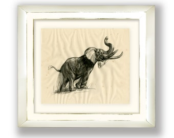 Vintage Gravure Elephant Print by artist D. Schwartz for Astra Pharmaceutical Products Inc., 1950's