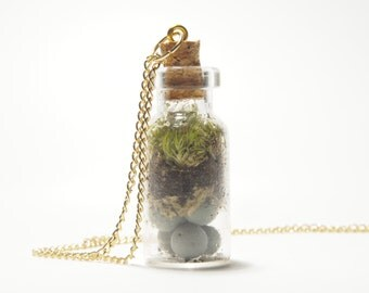 Living Necklace Terrarium Necklace Live Moss Necklace Watering and Sunlight Required