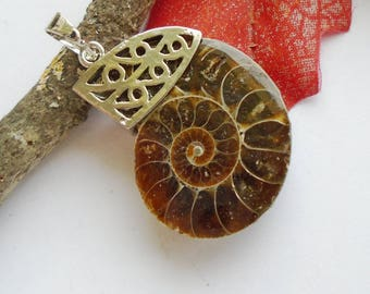 Ammonite fossil, snail, Brown, charm, pendant, silver plated, charm, Talisman