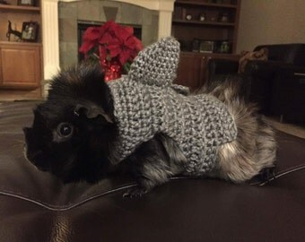 Guinea Pig Costume, Shark Costume, Guinea Pig Clothes, Skinny Pig Sweater, Cavy Sweater, Small Pet Clothes, Crochet Pet Sweater, Accessories