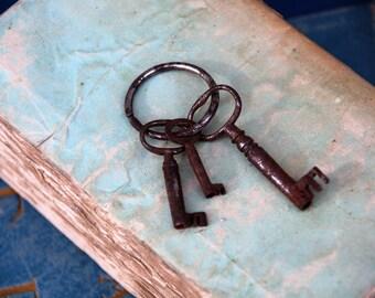 French Rustic Keys/Keys for Decoration/3 Rusty Keys on Ring/French Chabby Chic Keys/Rustic French Key Set/Pretty Rusty Keys