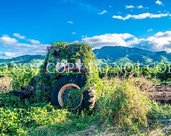 DIgital Backdrop Background Farm Mountains