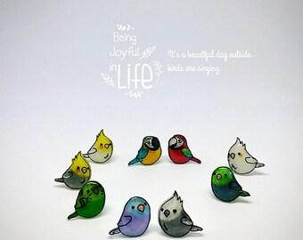 Love Birds Earrings *Budgerigar *Parrot (Allergy Free)