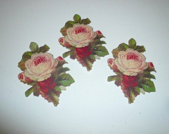 Anna Griffin Diecut Cabbage Roses Paper Embellishments Scrapbook Craft Supplies Cardmaking Paper Craft Supplies