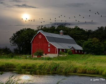 Summer Ducks & Barn # 201