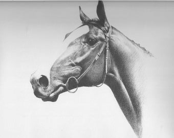 Horse Print CW Anderson Vintage Race Horse Thoroughbred Horse Racing Derby Equine Wall Art Vintage Equestrian Horse Decor 1940 Humoris