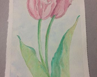 Pink tulips on sky blue