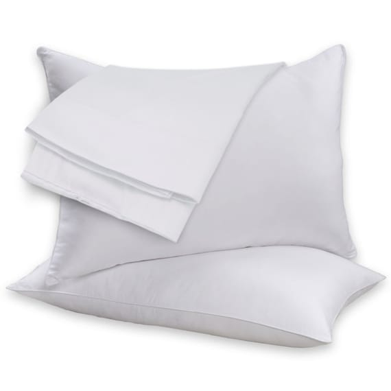 2 pack beauty sleep 100 cotton shell feather goose down for Duck or goose feather pillows which is better