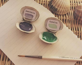Mermaid Shell Handmade Watercolour Paints