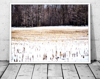 Forest Print, Forest Photography, Nature Prints, Forest Wall Art, Forest Art, winter Poster, Woodland Prints, Modern, Printable Art, canada