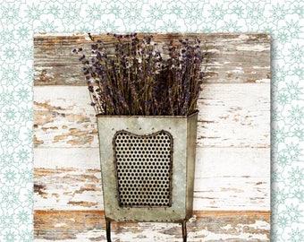 Dalton Vintage Metal Wall Box with Towel Bar // Vintage Farmhouse // Vintage Kitchen // French Country // Industrial // Garden Decor