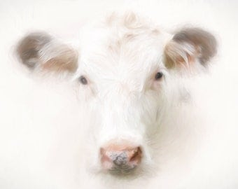 "Buttercup cow print 16""x24"" canvas  PREORDER"