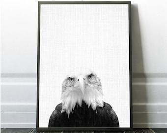 Eagle Photo, Eagle Photo, Eagle Art, Eagle Wall Print, Eagle Poster, Digital Download Eagle, Printable Large Poster, Printable Kids Poster