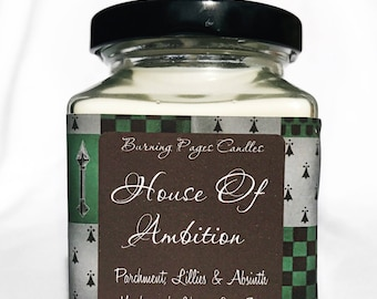 House of Ambition- Slytherin inspired Hogwarts House - Harry Potter