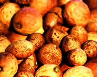 ORGANIC Mongongo Oil UNREFINED Cold Pressed Organic Manketti Oil Cold Pressed, Organic Mongongo Nut Oil UNREFINED Undiluted Manketti Oil