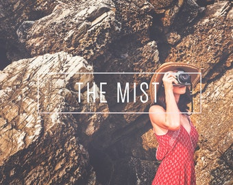 The Mist Indie Muse Collection 3 Presets  4 Tool Presets 9 LR Brushes Lightroom Presets for Professional Results by LouMarksPhoto