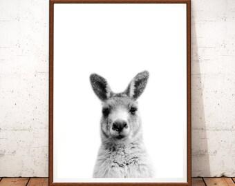 Kangaroo Print, Australian Animal Prints, Kangaroo Printable Art, Kangaroo Nursery, Australian Animal Wall Art, Australia Animal Decor