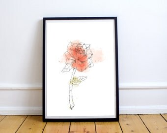 Rose - Print 8 X 10 Illustration with watercolors