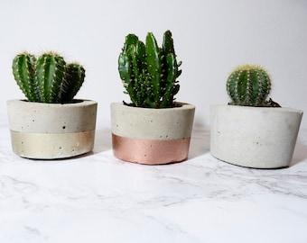 Concrete plant pot | mini | dipped | by Olive Jennings Furniture