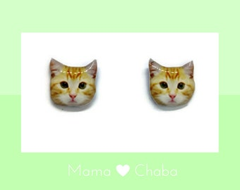 Tabby Cat earrings with free gifts, Kitten, Ready to ship, Made in Australia, Cat Lover Gift, Birthday Gift
